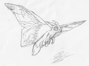 Mothra Leo, quick art, pencil